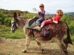 gemütliche Eselwanderung