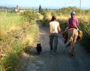 2. Eselwandern zwei Tages Wanderung