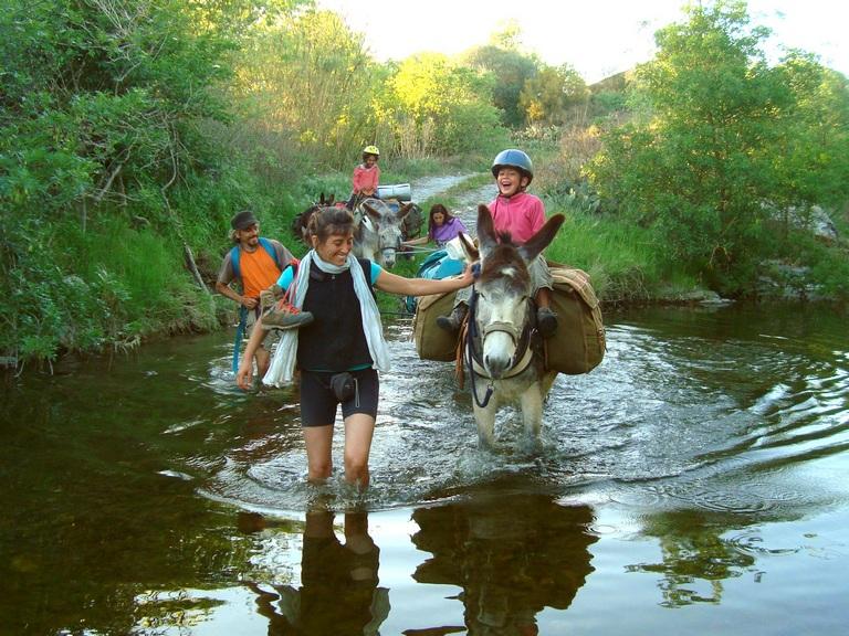 cruzando el rio con burros