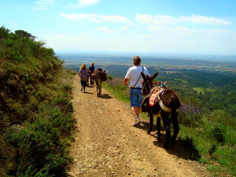 excursion con burros