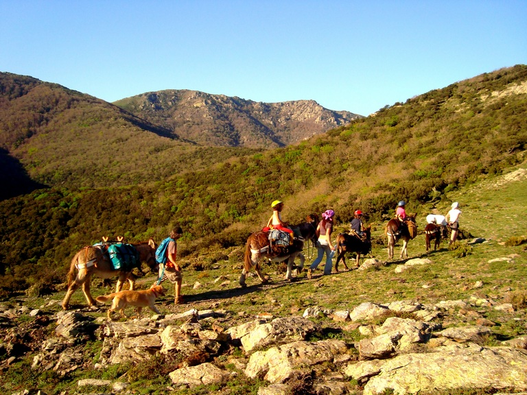 Donkey trekking spain
