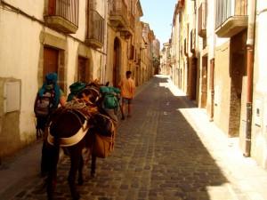 Maçanet de Cabrenys - senderismo con burros