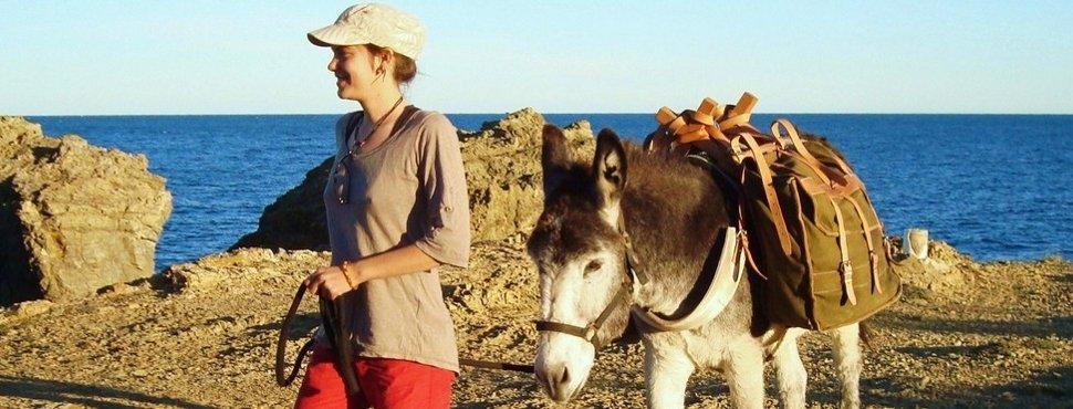 Promenades et randonnées avec des ânes