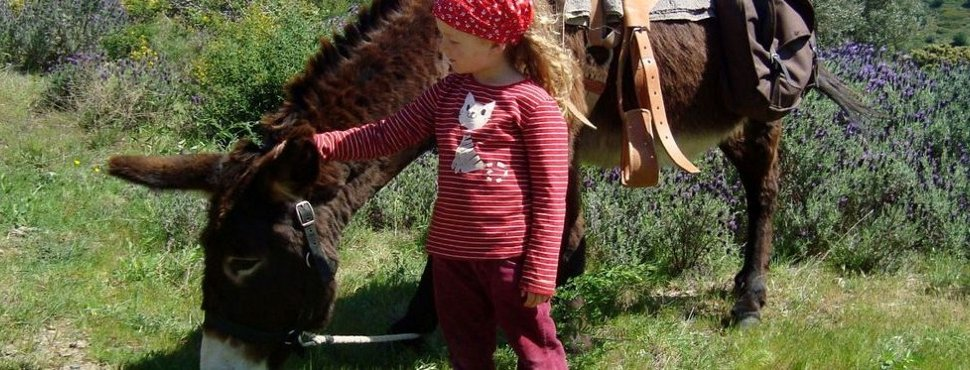 Eselwandern und Eseltrekking