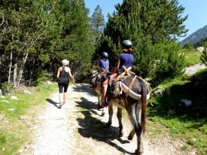 ruta de un dia con burro- Tageswanderung mit dem Esel