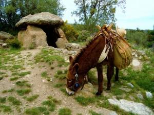 dolmen Can torres vilartoli