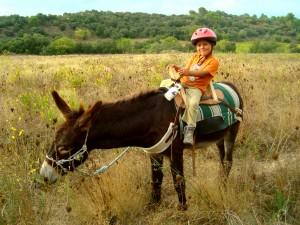 4d Eselwandern mit Kindern