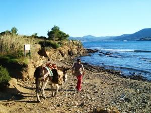 6d Eselwandern Cap de Creus