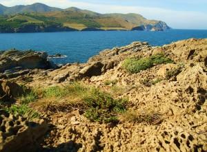 6d Eselwandern am Meer- Cap Ras