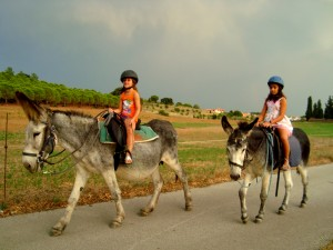 Eselreiten in Garriguella