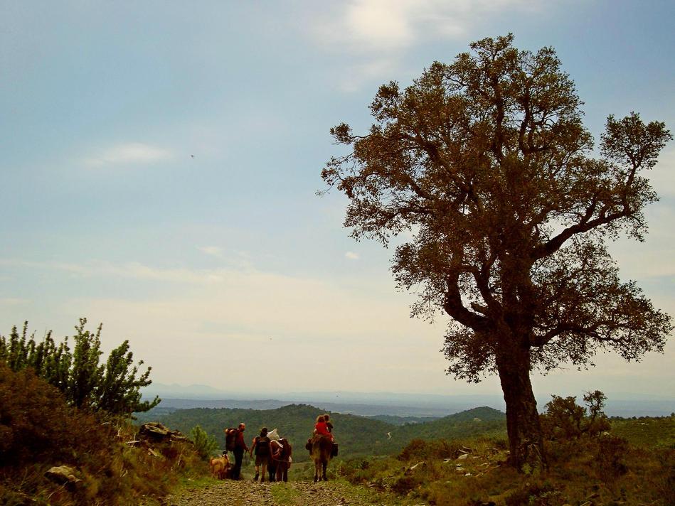 Eselwandern Costa Brava- Senderismo con Burros Costa Brava- Hikeing with donkey Costa Brava