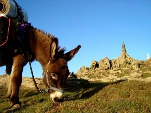 3. Eselwandern Summit