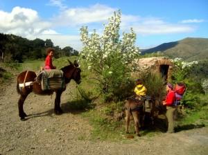 Pause auf der Eselwanderung