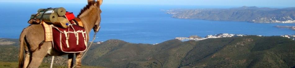 Costa Brava und Pyrenäen