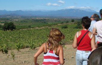 Eselreiten mit Kindern in Garriguella