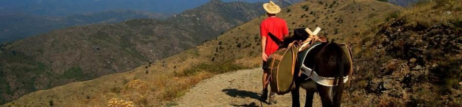 Trekking amb rucs