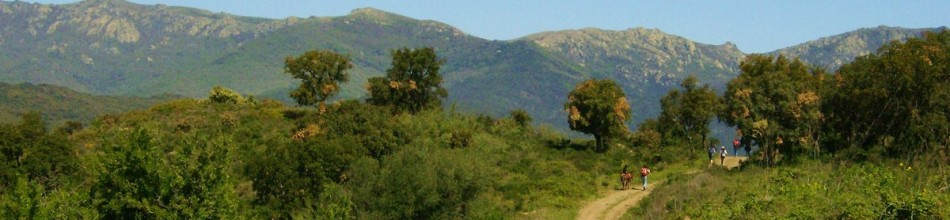 """2-day Tour- """" At the foot of the Pyrenees """""""